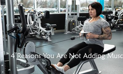 4 Reasons You Are Not Adding Muscle