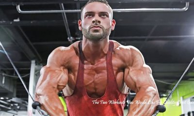 Pectoral Split: The Two Workouts You Would Like For Quality Chest Gains!